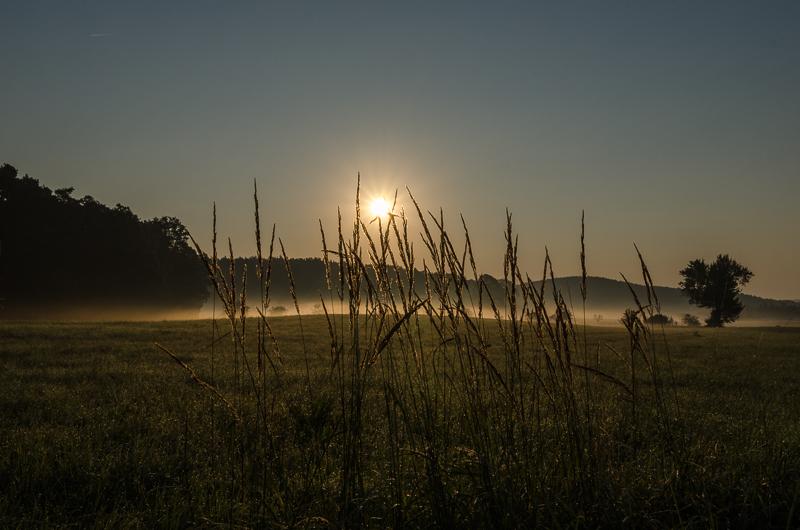 Gülden erwacht der Morgen, Trübenbach